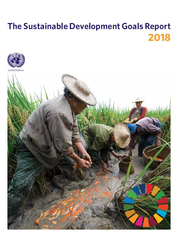 SDG Report