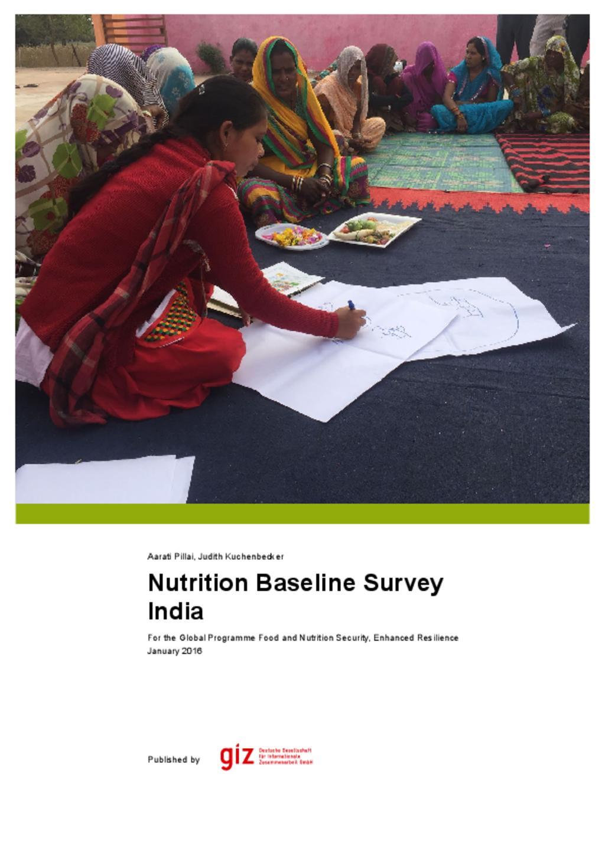 Giz Nutrition baseline study